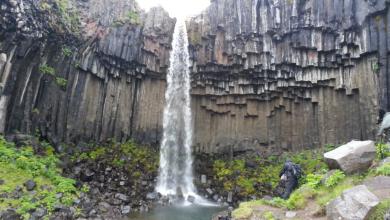 IJsland, een land van vuur, groenten en veel ijs