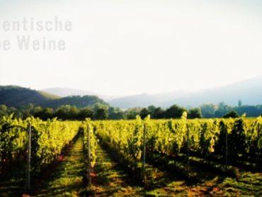 Wijnen uit de Nahe (Duitsland)