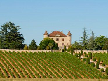 Wijnweetjes gespot en uitgelicht