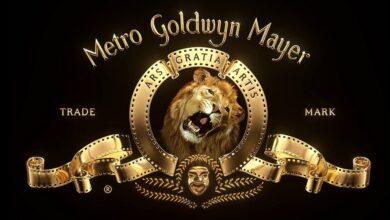 Cursiefje van Lieve Mariën: De brullende leeuw